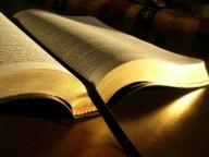 bibbia42